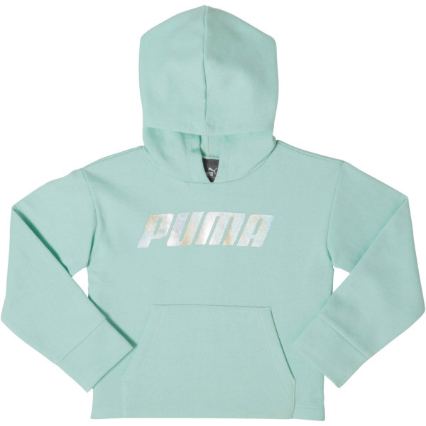 Toddler Fleece Pullover Hoodie, FAIR AQUA, large
