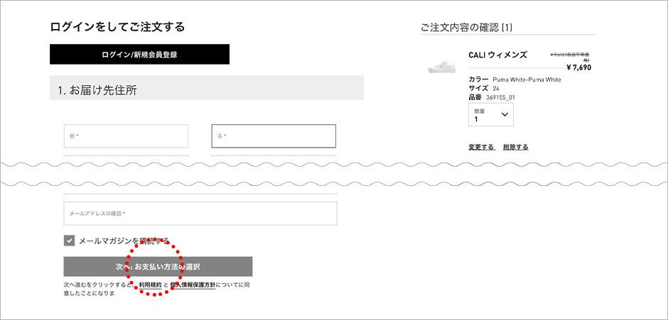 注文情報を入力し、お支払い方法選択のページへ進んでください。